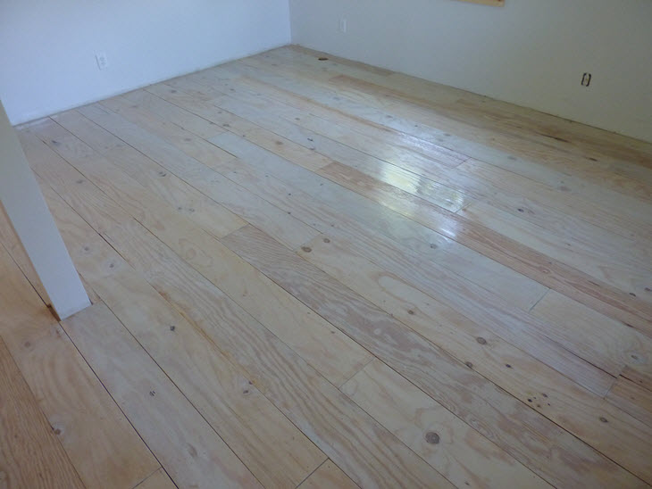 The plywood floors with a fresh coat of polyurethane